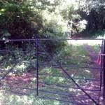 CCBC Gate 3